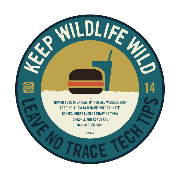 Leave No Trace Tip 6
